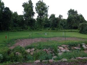 backyard-emily-s