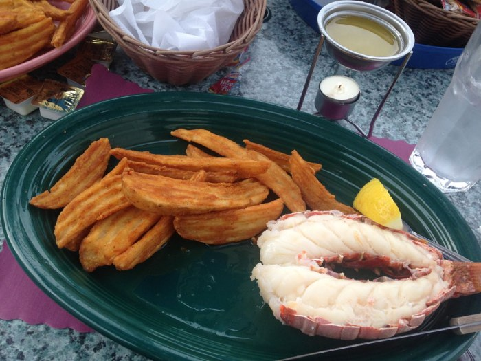 giannotti-s-country-manor-lobster-tail-steak-fries